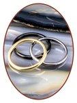 JB Memorials Tungsten Carbide Dames Ring 2mm - TU001